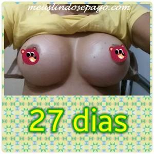 27dias