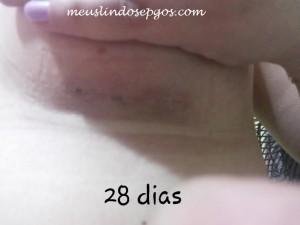 28diass