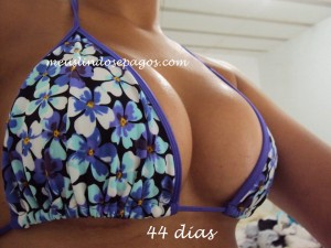 44dias1