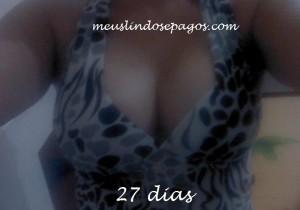 27 dias9