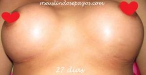 27dias1