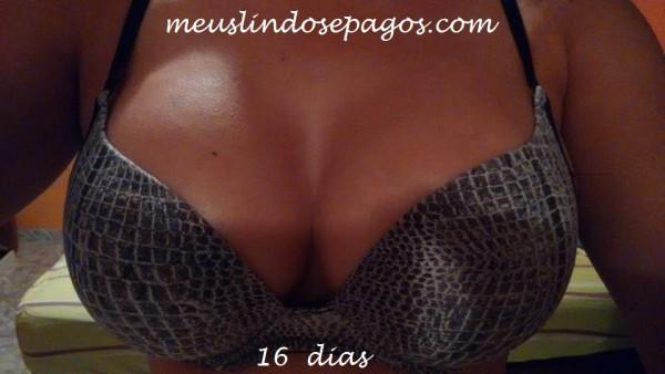 16dias