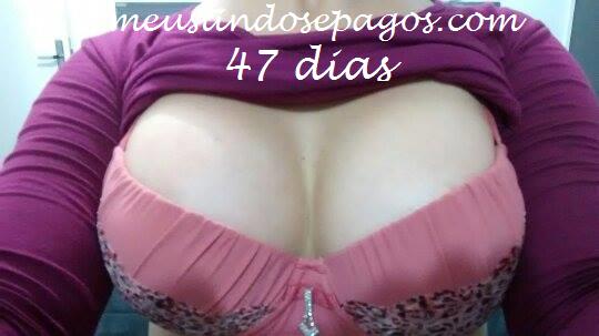 47dias4