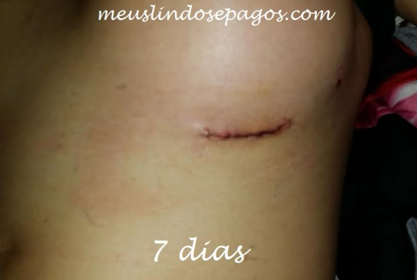 7dias2 (1)