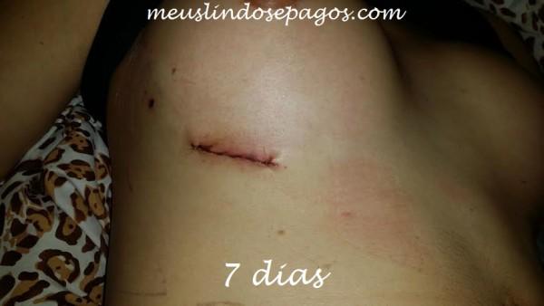 7dias2 (2)
