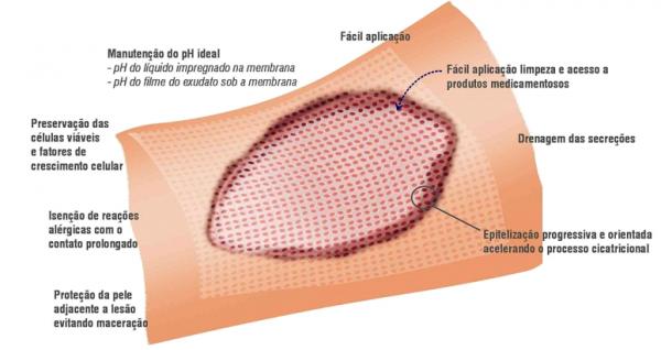 membrana-pelicula4