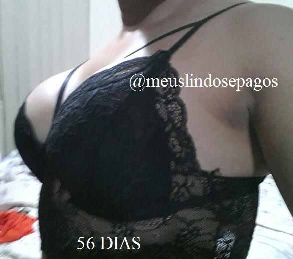 56dias1